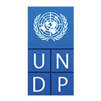 UNDP (United Nations Development Programme)
